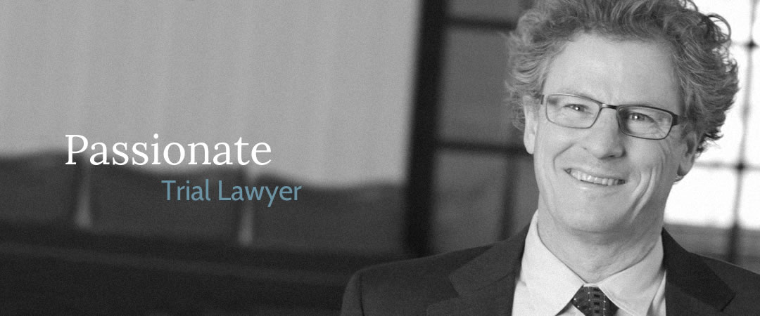 Passionate Trial Lawyer